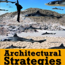 Architectural Strategies- cover